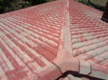 Peeling Roof Before